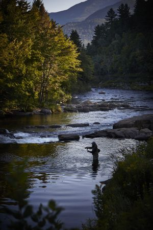 ausable river6.jpg